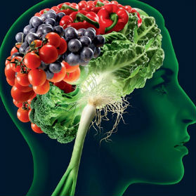 Quanutrition - Best Clinic For Nutrition for Mental Health